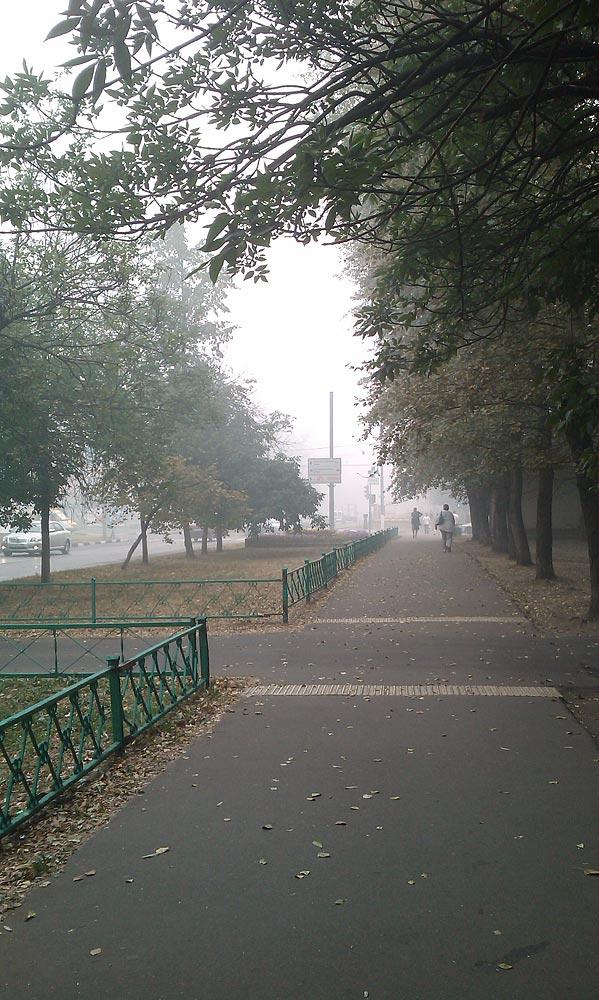 Горящие торфяники в Москве 2010 год