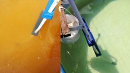 Как очистить воду в бассейне на даче
